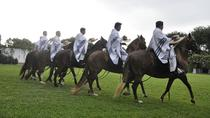 Peruvian Paso Horses Show plus Lunch or Open Bar, Lima, Cultural Tours