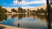 Private Sandboard and Buggy Ride Experience in Huacachina and Ica City Tour from Lima, Lima, ...