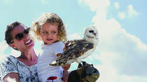 FAMILY FUN & FURRY FRIENDS, FAMILY DAY IN THE WINELANDS, Stellenbosch, Nature & Wildlife