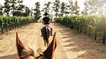 WINELANDS EQUESTRIAN ADVENTURE- HORSE RIDING & WINE, Franschhoek, 4WD, ATV & Off-Road Tours