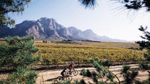 WINELANDS SIP AND CYCLE SAFARI, Franschhoek, Day Trips