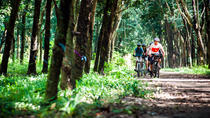 Bike the Cu Chi Tunnels, Ho Chi Minh City, Full-day Tours