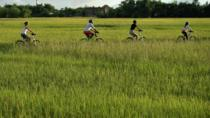 Half-Day Hoi An Countryside and Villages Bike Tour from Da Nang, Da Nang, Bike & Mountain Bike Tours