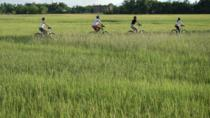 Hoi An Countryside Bike Tour, Hoi An, Bike & Mountain Bike Tours