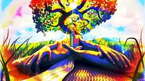 Psychedelic Tour of San Francisco, San Francisco, City Tours