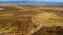 Full-Day Cuilcagh Legnabrocky Trail and Stairway to Heaven Hike from Dublin, Dublin, Bus & Minivan...