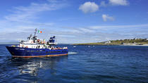 Round-trip boat transfer to Inis Oirr in the Aran Islands from Doolin, Western Ireland, Day Cruises