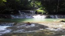 Appleton Estate Rum and YS Falls Tour, Montego Bay, Private Sightseeing Tours