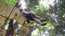 Canopy Zip Line and Safari Tour from Falmouth , Falmouth, Ziplines