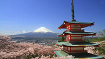 2D1N Osaka,Kyoto - Tokyo Bus Tour through Shirakawago, Hida Takayama and Mt Fuji, Osaka, Multi-day ...
