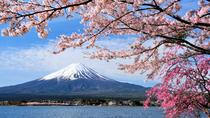 3D2N Tokyo - Kyoto,Osaka Tour (Mt Fuji, Kawaguchiko, Hida Takayama, Shirakawago), Tokyo, Multi-day...