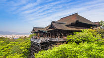 Day Trip by Bus to Kyoto from Osaka, Osaka, Full-day Tours