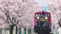 Sagano Romantic Train & Arashiyama, Kiyomizudera, Fushimi Inari Taisha Day Tour, Osaka, Romantic...