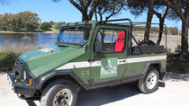 Jeep Tour - Bird watching in Ria Formosa in Quinta do Marim, Faro, 4WD, ATV & Off-Road Tours