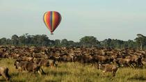 3 Days 2 Nights Masai Mara Joining Safari From Nairobi, Nairobi, Multi-day Tours