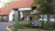 Full-Day Nairobi National Park, Delphine Sheldrick Elephant Orphanage and Karen Blixen Museum ...