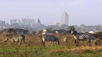Full-Day Nairobi National Park, Elephant Orphanage, Giraffe Center and Karen Blixen Museum Guided...
