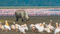 Lake Nakuru National Park: Day Trip from Nairobi, Nairobi, Day Trips