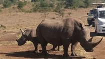 Nairobi National Park Game Drive Joining Safari, Nairobi, Attraction Tickets