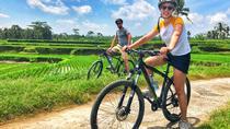 Kintamani Cycling : Downhill Mountain cycling Tour, Kuta, City Tours