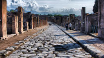 Private Day Tour from Rome to Pompeii and Herculaneum, Rome, Private Sightseeing Tours