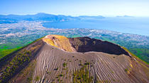 Skip-the-lines private tour of Ancient Herculaneum and Volcano Vesuvius with local guide and ...