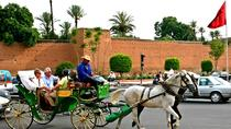 Horse carriage ride in Marrakech, Marrakech, Horse Carriage Rides