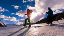 Wild Spirit Snowshoe Tour, Whistler, Ski & Snow