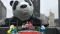Chengdu Private Tour of Panda Experience, Chengdu, Private Sightseeing Tours