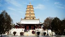 Private Day Tour of Xian City Overview, Xian, Airport & Ground Transfers