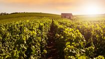 Champagne Region Day Trip with Two Champagne Tastings and Reims Cathedral, Paris, Day Trips