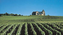Small-Group Champagne Day Trip with Moet et Chandon visit and Lunch included