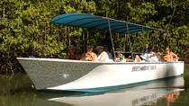 Damas Mangrove Boat Tour, Quepos, 4WD, ATV & Off-Road Tours
