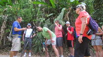 Manuel Antonio National Park Tour, Quepos, Walking Tours
