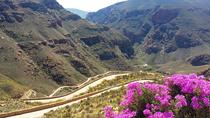 Half-Day Swartberg Pass Tour from Oudtshoorn, Garden Route