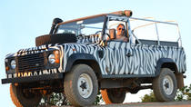 Algarve Jeep Full-Day Tour from Albufeira Including Lunch, Albufeira, Day Trips