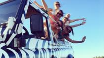 Algarve Jeep Half-Day Tour from Albufeira, Albufeira, Half-day Tours