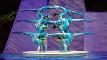 Chinese Acrobats and Shanghai Evening Tour, Shanghai, null