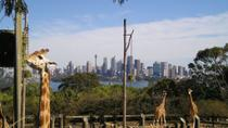 Sydney Taronga Zoo's Australian Animals Tour and Sky Safari, Sydney