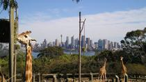 Sydney Taronga Zoo's Australian Animals Tour, Sydney, Zoo Tickets & Passes