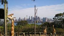 Tour der Australian Animals im Taronga Zoo in Sydney, Sydney