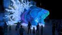 VIVID at Taronga Zoo with Full Day Zoo Entry, Sydney, Zoo Tickets & Passes