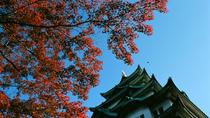 Private Full Day Nagoya Tour, Nagoya, Day Trips