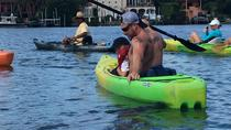 Siesta Key Kayak Rental, Sarasota, Kayaking & Canoeing