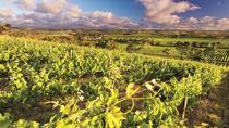 d'Arenberg McLaren Vale: Make Your Own Wine