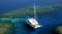 Great Barrier Reef Snorkel and Dive Cruise from Cairns by Luxury Catamaran, Cairns e o Trópico ...