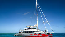 Great Barrier Reef Tauch- und Schnorchel-Bootstour ab Cairns mit einem luxuriösen Katamaran, Cairns & the Tropical North, Catamaran Cruises