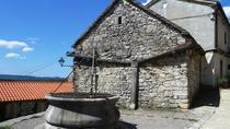 Kras Region Culinary Heritage Tour from Ljubljana, Ljubljana, Day Trips