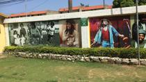 Bob Marley Nine Mile and Dunns River Combo from Ocho Rios, Montego Bay, Cultural Tours