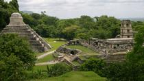 Coba and Tulum Ruins Tour Plus Cenote Visit and Playa del Carmen, Cancun, Day Trips